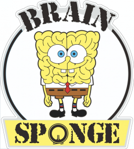 Brain Sponge 1